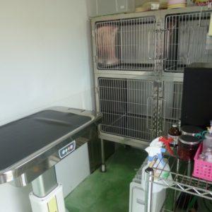 隔離入院室